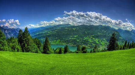 greens, grass, mountains