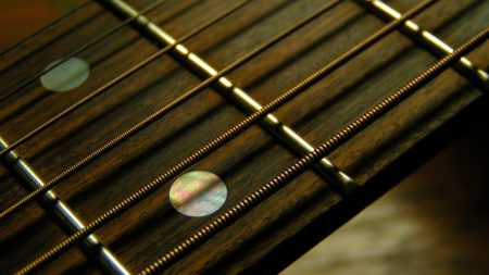 guitar, strings, strips