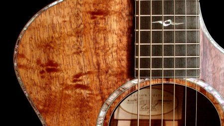 guitar, wood, strings