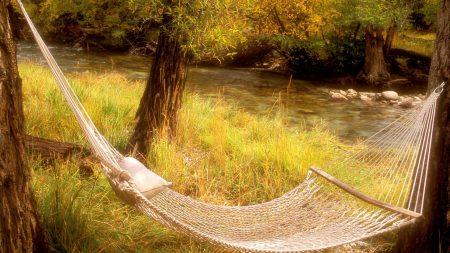 hammock, trees, river