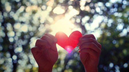 hands, heart, light