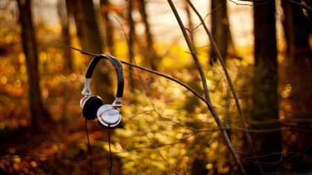 headphones, forest, branch