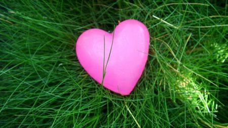 heart, grass, bright