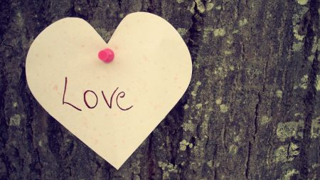 heart, love, tree