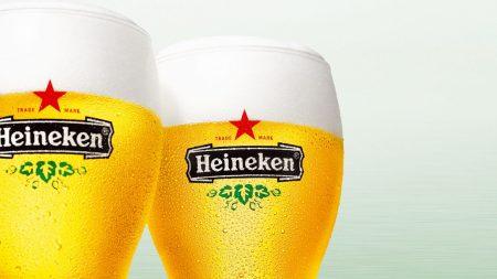 heineken, beer, glasses