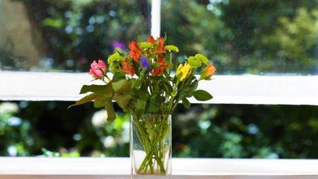 herbs, flowers, bouquet