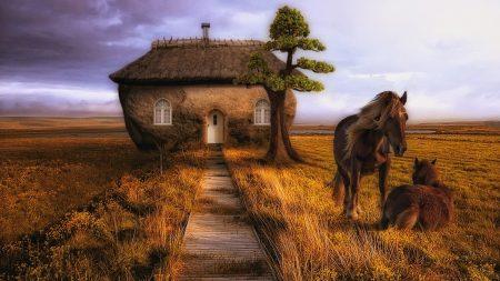 horse, couple, building