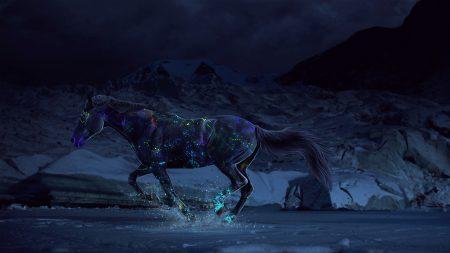 horse, paints, water