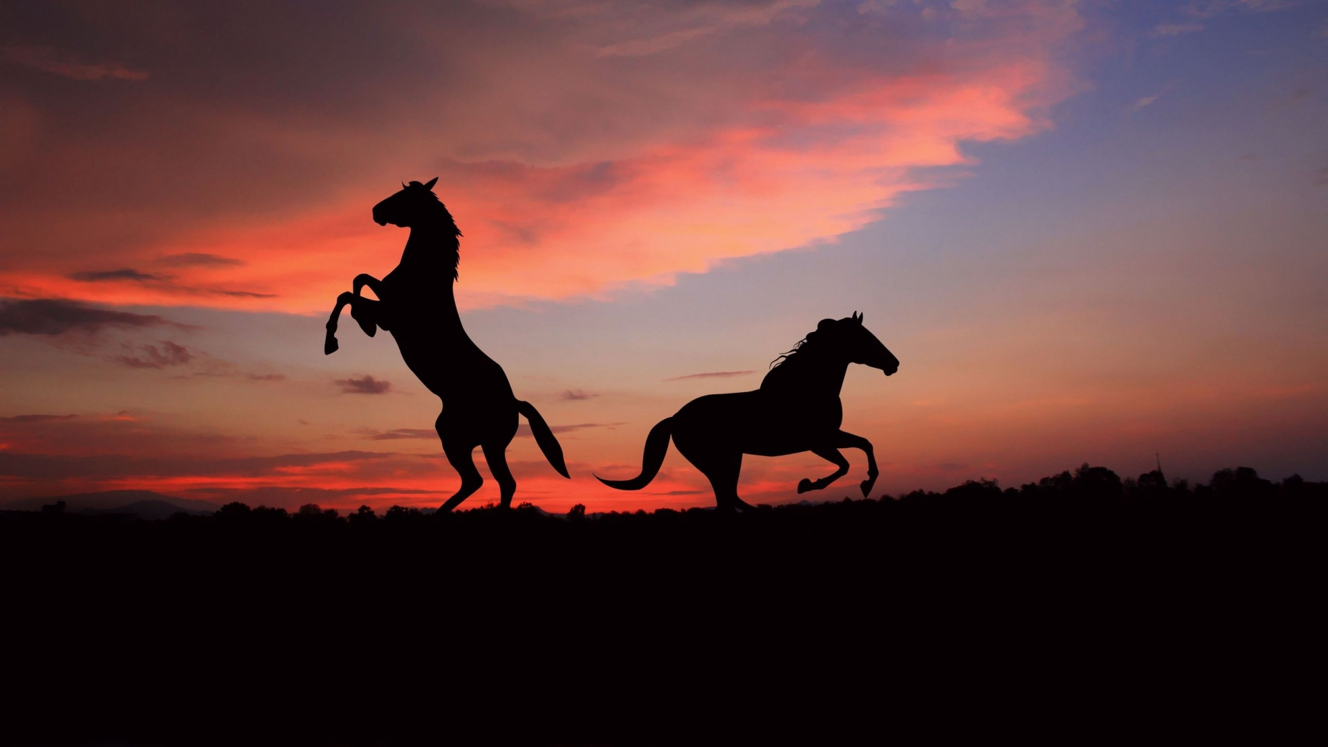 Download Wallpaper 1920x1080 Horse Sunset Jumping Sky Full Hd 1080p Hd Background