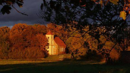 house, trees, autumn