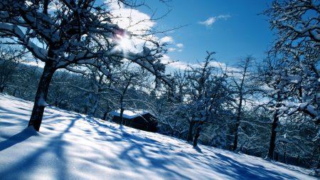 house, winter, snow