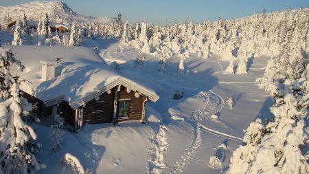 house, wood, solitude
