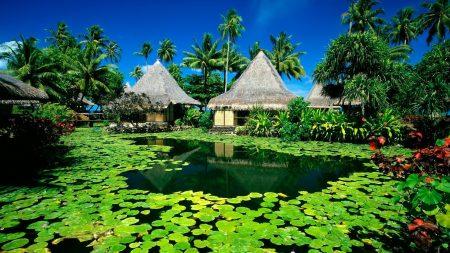 huts, palm trees, lake