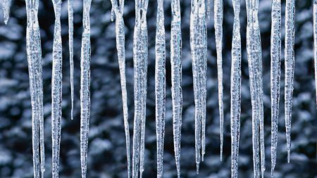 icicles, frost, ice