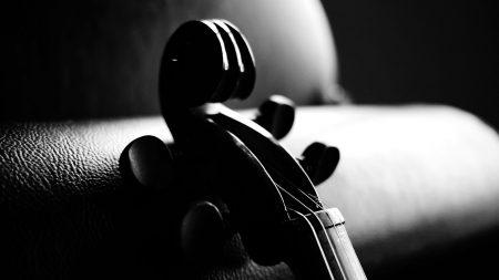 instrument, strings, sofa