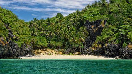 island, coast, palm trees