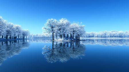 island, trees, frost