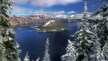 island, winter, fir-trees