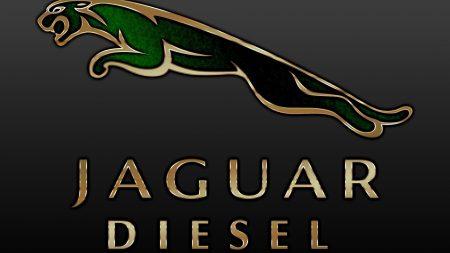 jaguar, brand, product