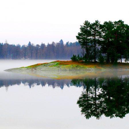 lake, morning, fog
