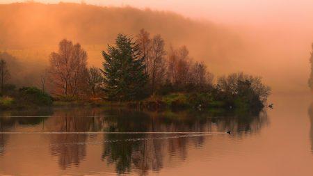 lake, morning, swimming