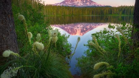 lake, mountain, top