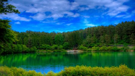 lake, picturesque, colors