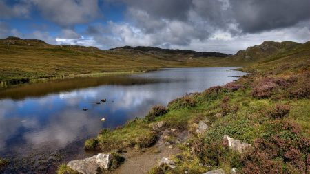 lake, stones, sky