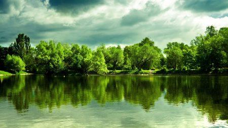 lake, trees, coast