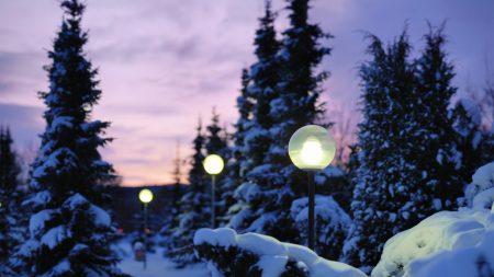 lamps, snow, winter