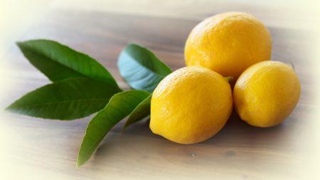 lemons, leaves, yellow