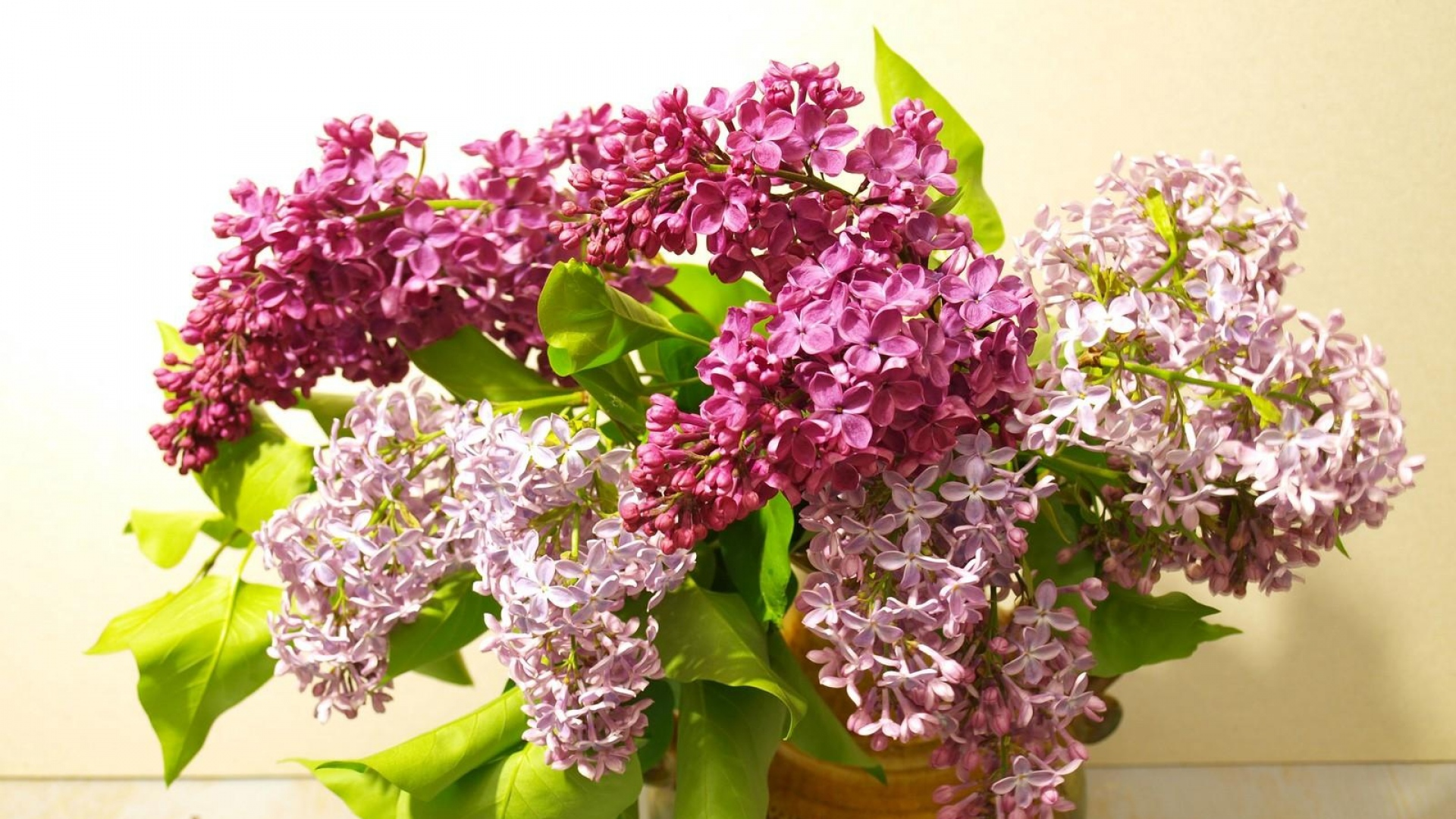 download wallpaper lilac bouquet - photo #24