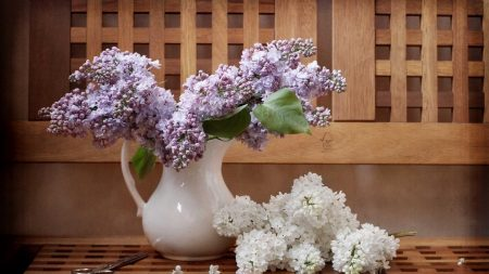 lilacs, twigs, pitcher