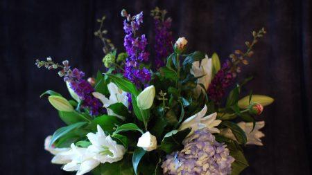 lilies, delphinium, hydrangea
