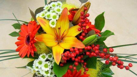 lilies, gerberas, chrysanthemums