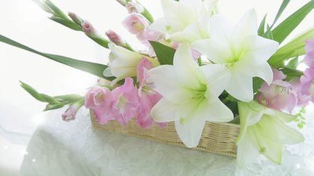 lilies, gladiolus, flowers