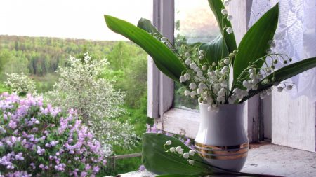 lilys of the valley, vase, lilac