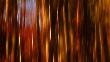 line, vertical, light