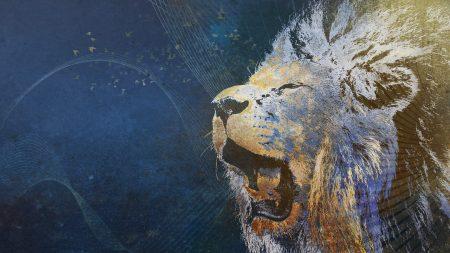 lion, grin, image