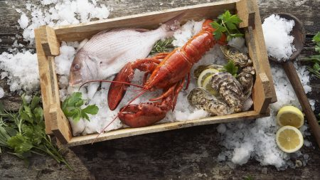 lobster, fish, mussels