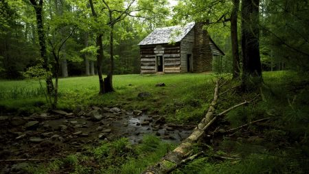 lodge, glade, stream