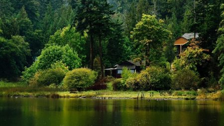 lodge, wood, lake