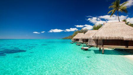 maldives, tropical, bungalows