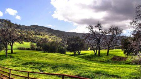 meadows, plain, fence