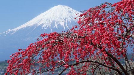 mountain, fuji, peak