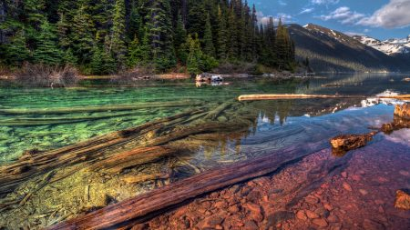 mountain, lake, forest