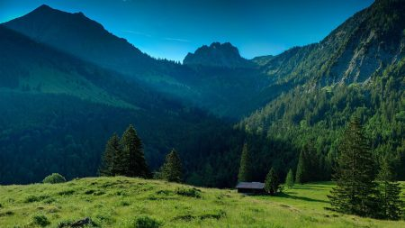 mountains, grass, nature