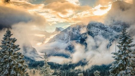 mountains, national park, forest