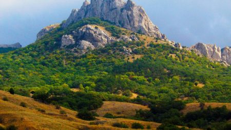 mountains, rock, trees