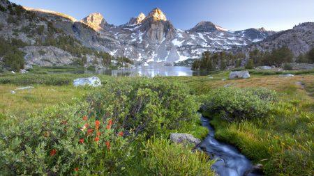 mountains, stream, bushes